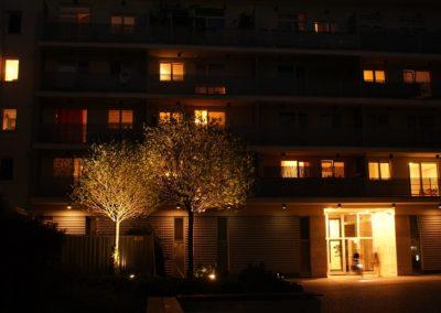 Oświetlenie zieleni Oświetlenie ogrodu