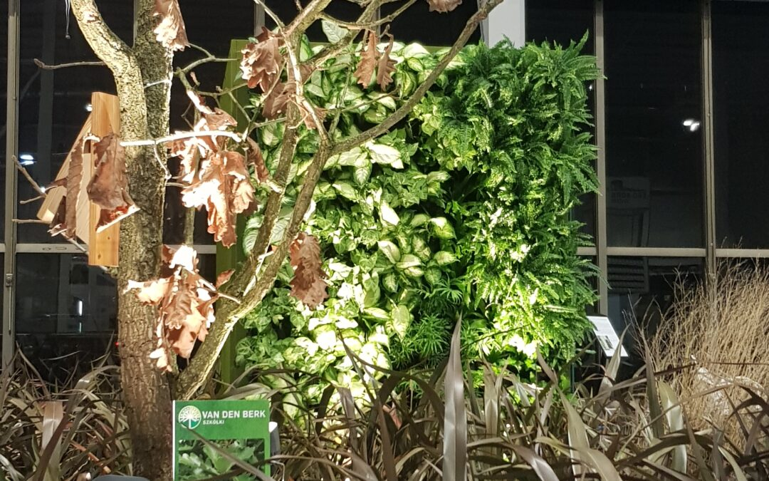 Smartlight na targach Gardenia 2020 razem z OSTO